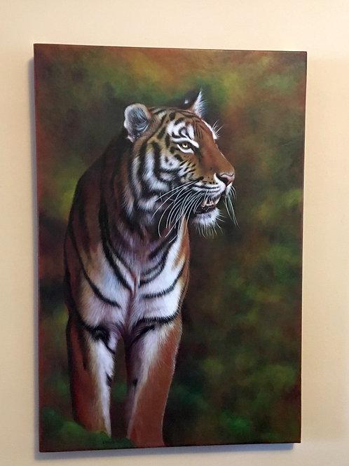 Tiger Tora