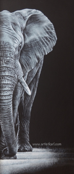 The Visitor - elephant