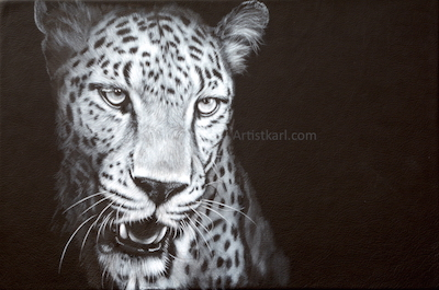 Night Shadow - leopard