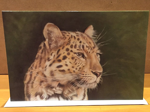 SALE Amur Leopard medium card