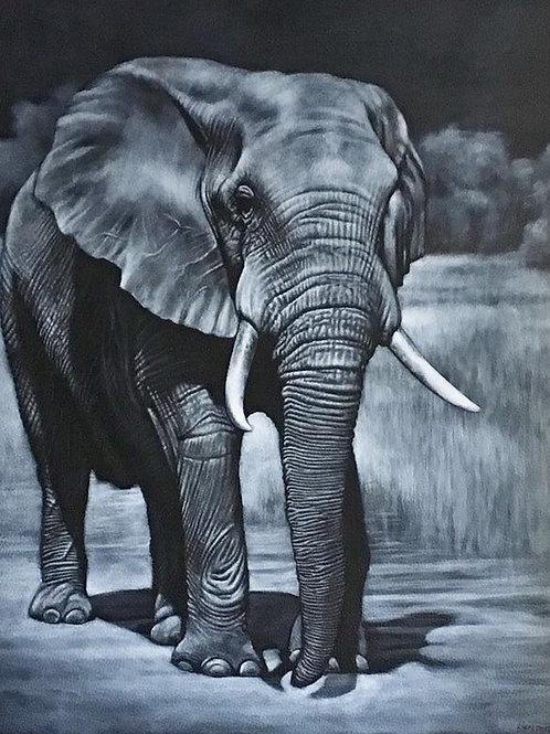 Night Walker elephant
