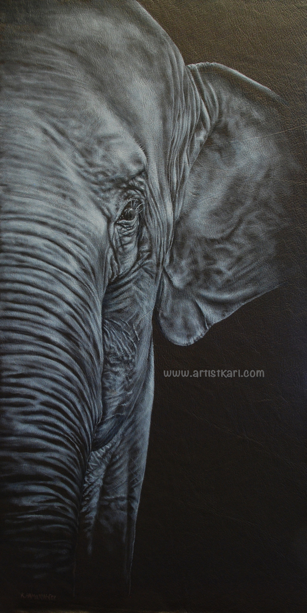 Close Encounter - elephant