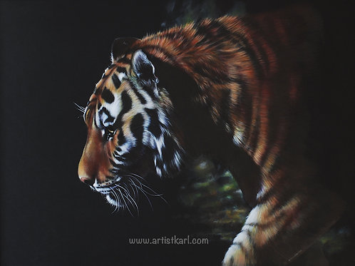 SALE Tiger Prowling signed mounted print