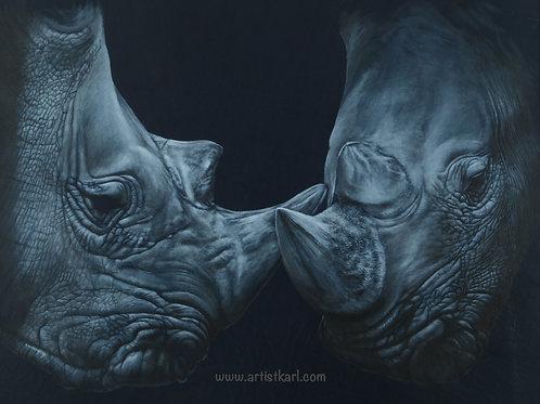 Closeness rhinos