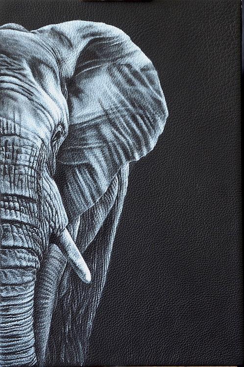 'Ellie' elephant