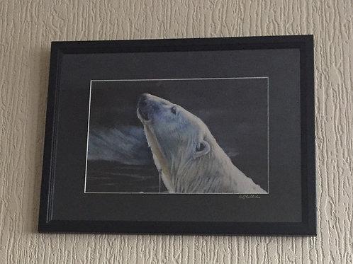 Moonlight Swim signed, mounted framed print