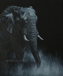 Twilight Stroll - elephant