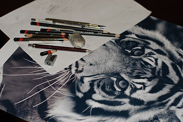 pencils drawing tiger rubber eraser