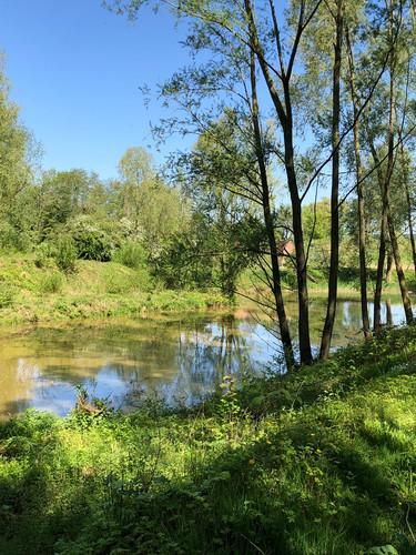Wachtbekken Molenbeek