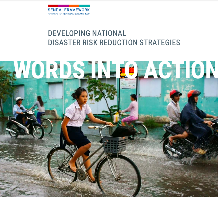 National DRR Strategy Guideline