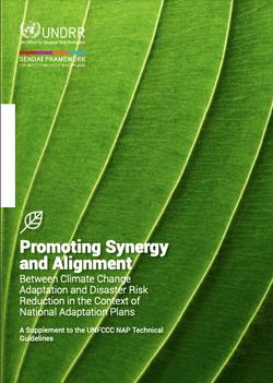Guidelines on DRR & CCA Integration