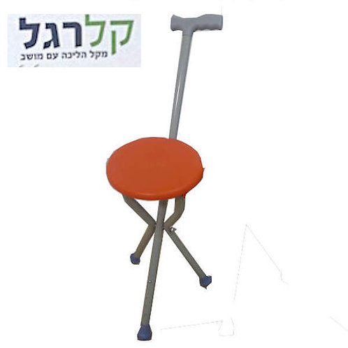 Walking stick with chair