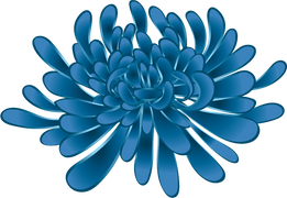 Peony New-21.png