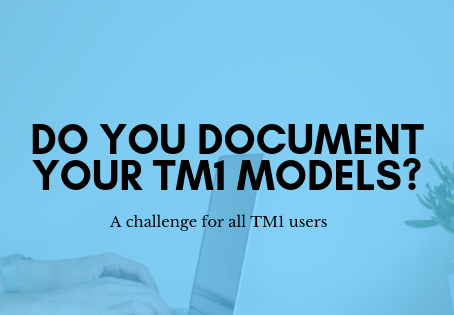 Do you document your TM1 models?