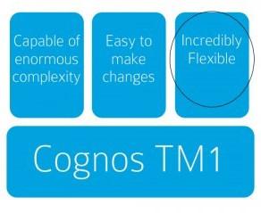 Managing Cognos TM1 with Effective Documentation: Part 3