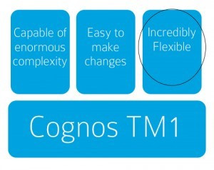 Managing Cognos TM1 with Effective Documentation: Part 3