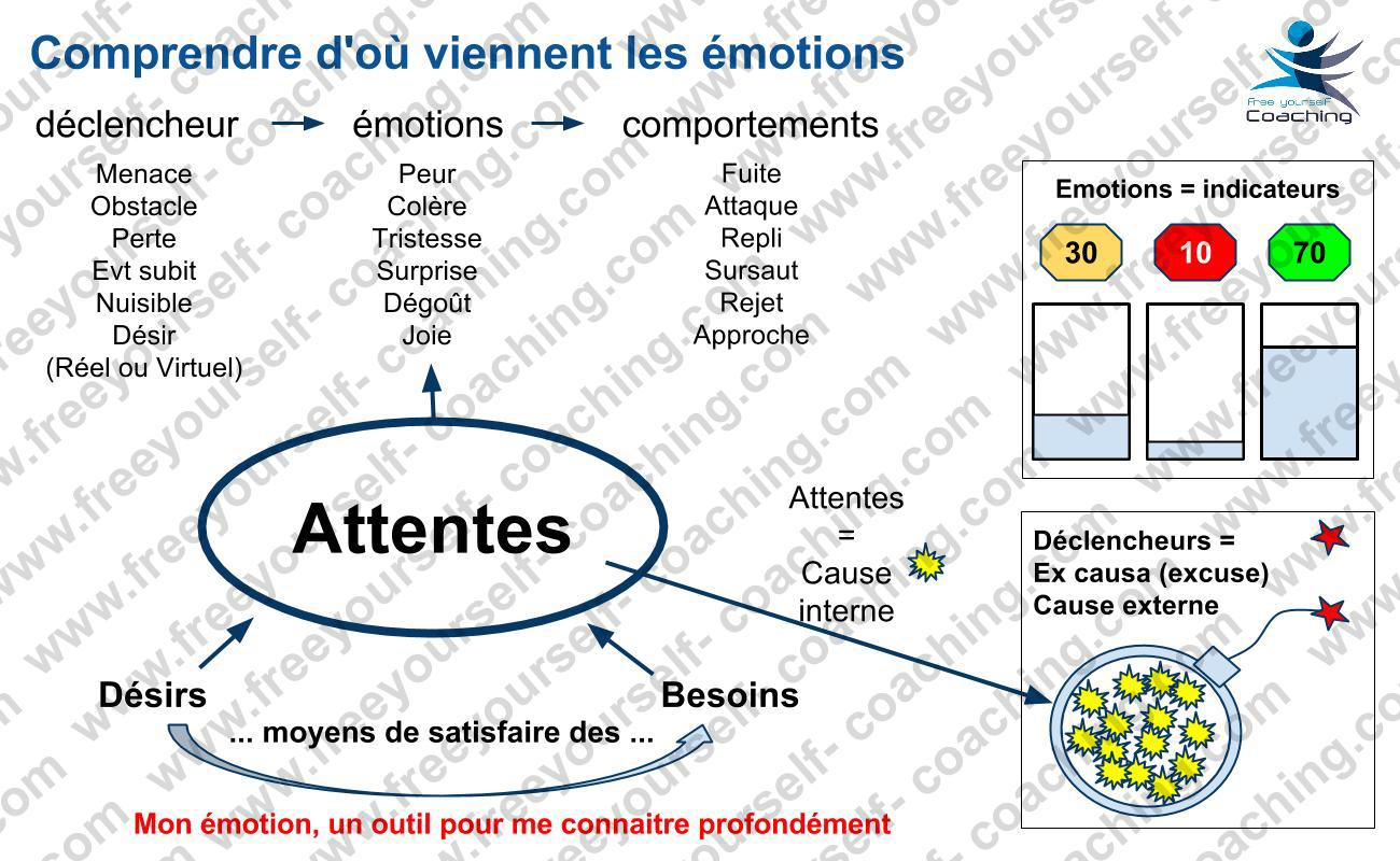 FYC_carte_IE_C03_d'ou_viennent_les_émotions