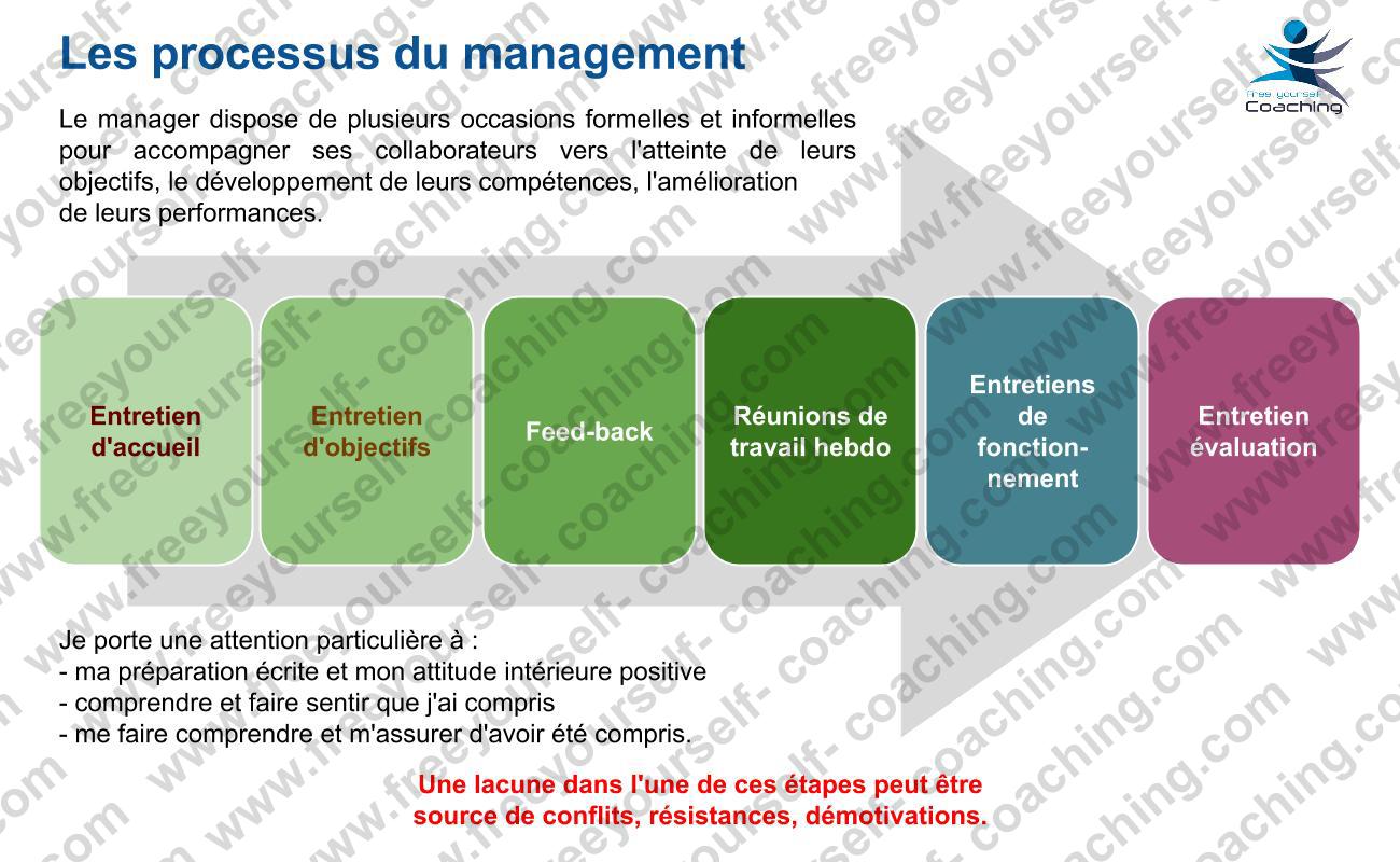FYC carte MGT C02 Les processus du management
