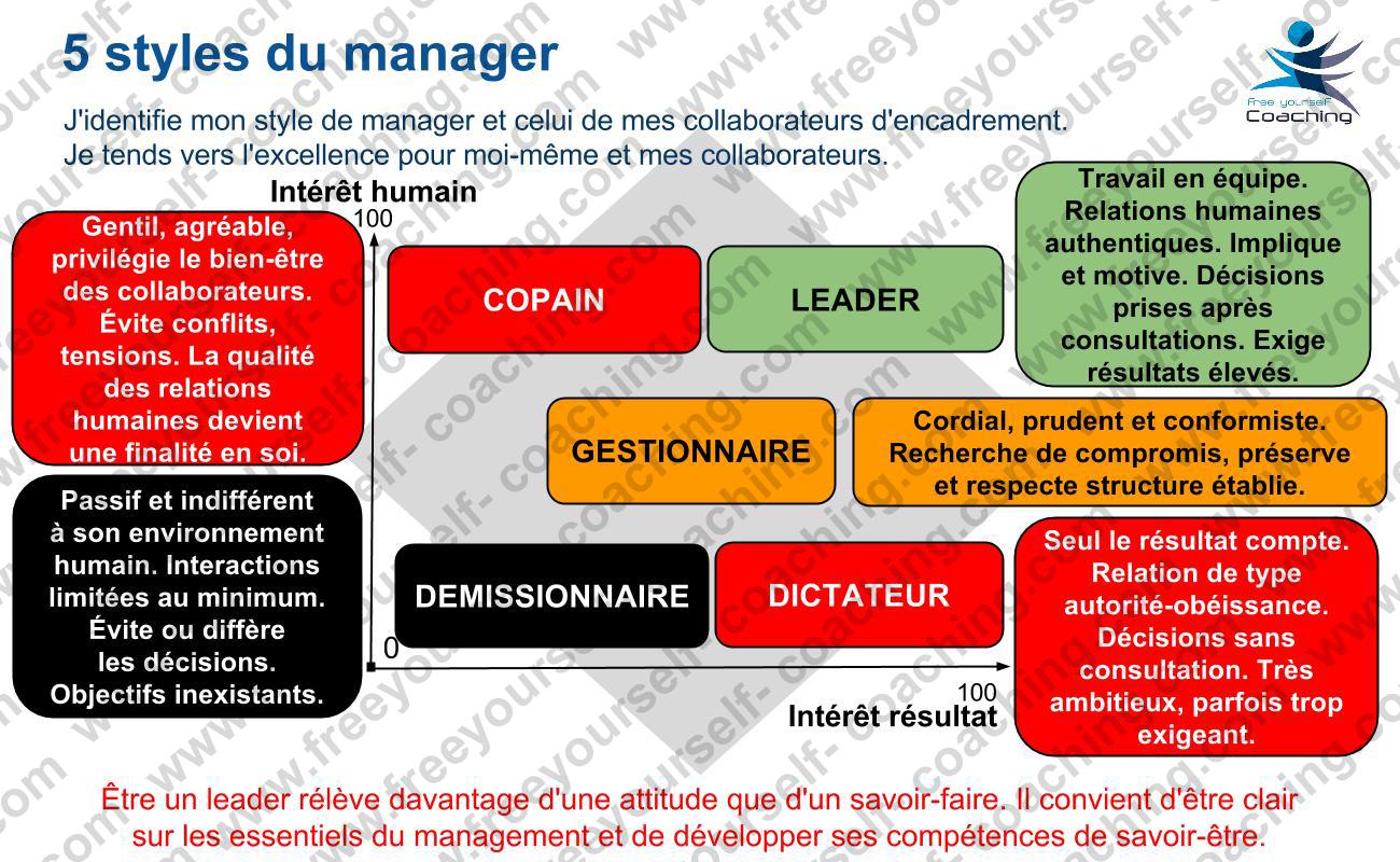 arte MGT C06V Les 5 styles de manager