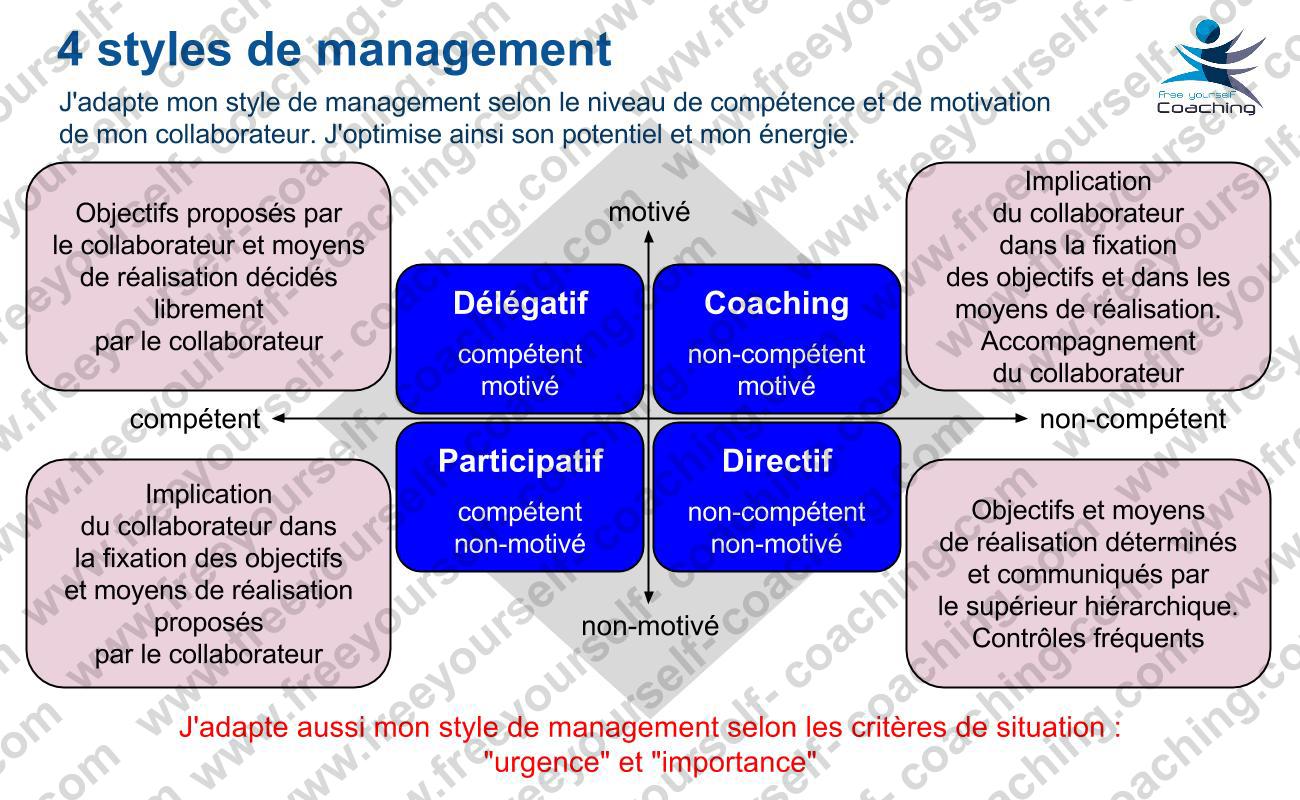 FYC carte MGT C05V Les 4 styles de management