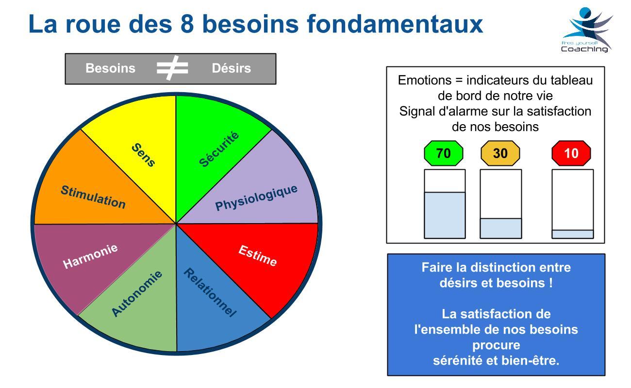 FYC carte IE C5 roue des 8 besoins fondamentaux