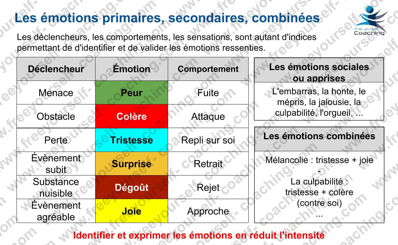 FYC_carte_IE_C02_les_différentes_émotions
