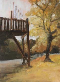 Norwood Park in Autumn