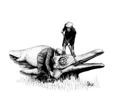 'Ichthyosaur'