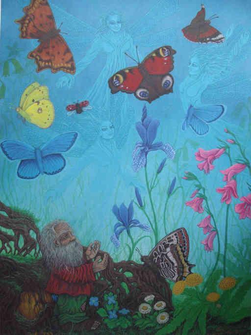 Schmetterling Zwerg