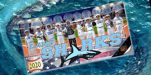 land sharks.jpg