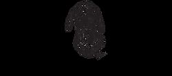 Logo%20Camillo_edited.png