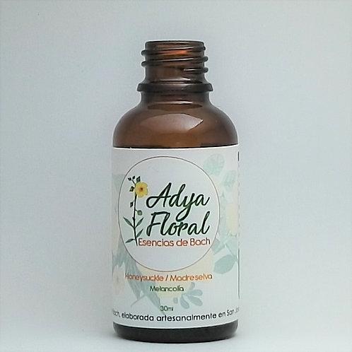 Adya Floral  - Honeysuckle (Madreselva)