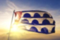 dsmflag2.jpg