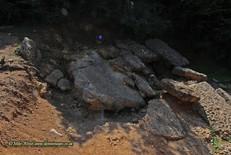 blue orb sunca 2.jpg