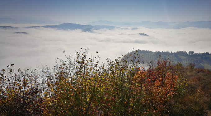 love and earth mist.jpg