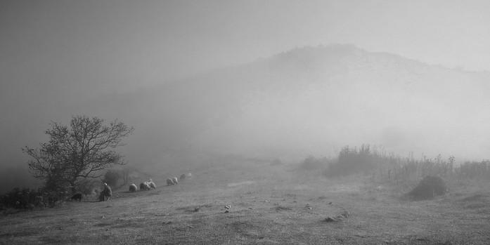 shepherds rest.jpg
