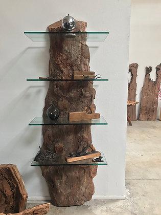 Live Oak Display