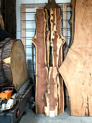 Live Edge Juniper Slabs