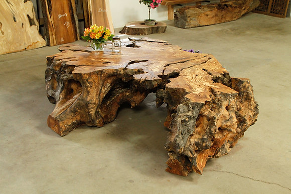 Olive Root Coffee Table