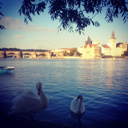 There are many beautiful places in Prague.jpg The spirit of this city introduced by locals.jpg Anyon