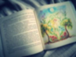 kniha příběhů malé elfky Andromedy