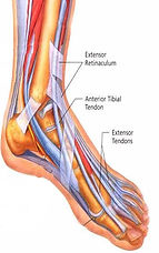 treatment-extensor-tendonit.jpg