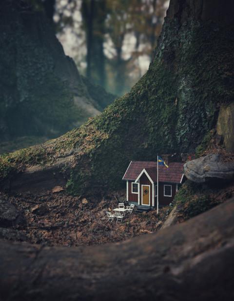 Stumphouse red 3-01.jpeg