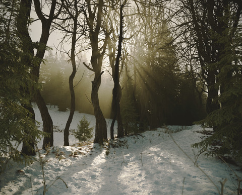 Snowlands test 3 post.jpg