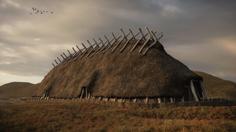 Viking Farmhouse Wide.jpg