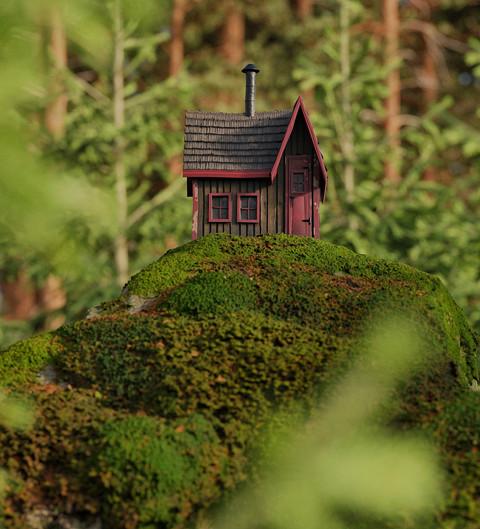 Minihouse on the rock.jpg