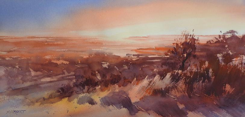 Watercolour Big Bush Painting PM-Sue Hibbert