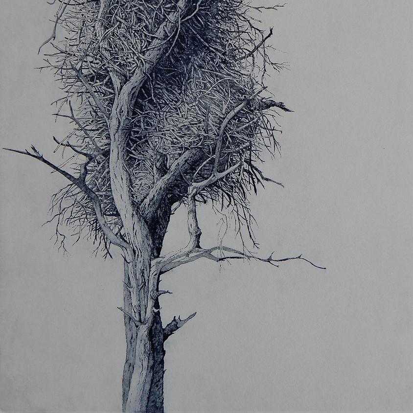 Tree House by Elmari Steyn