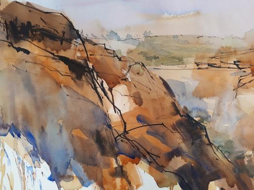 Watercolour Big Brush AM -Sue Hibbert