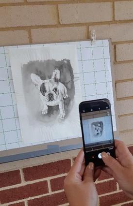 Judy Rogers - mobile 3.jpg